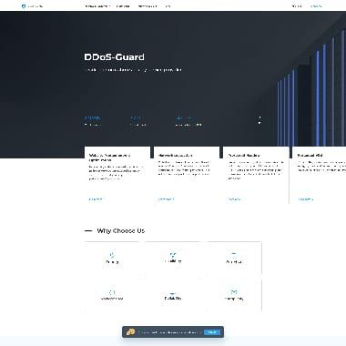 DDoS-GUARD HomePage Screenshot
